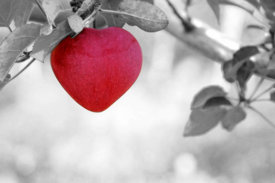 Metta Meditatie Uitleg – Ontwikkelen Liefdevolle Vriendelijkheid.