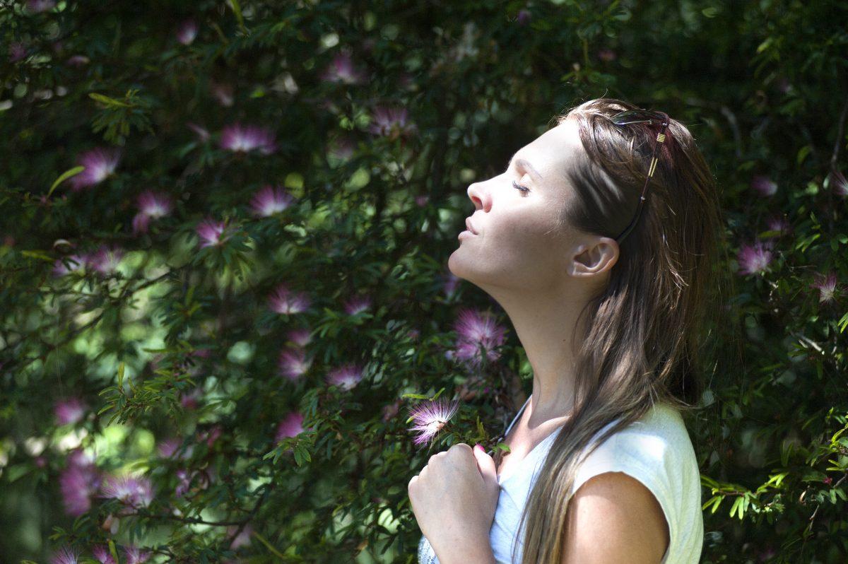 Meditatielessen in Zwolle – Wanneer beginnen de lessen weer?