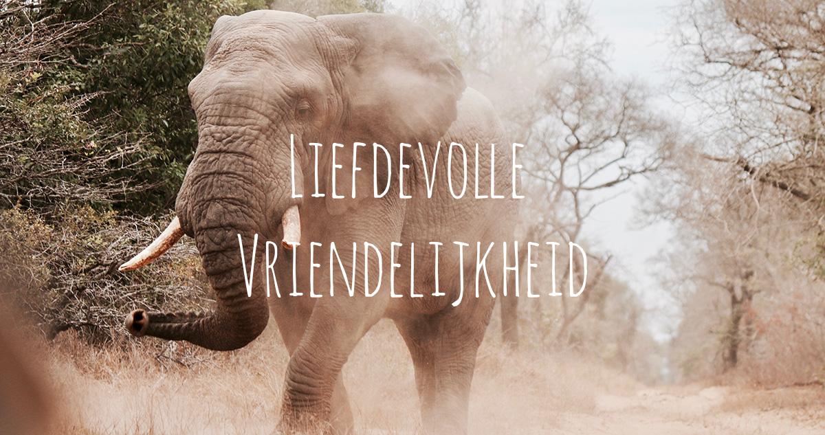 Boeddha temt boze olifant met liefdevolle vriendelijkheid