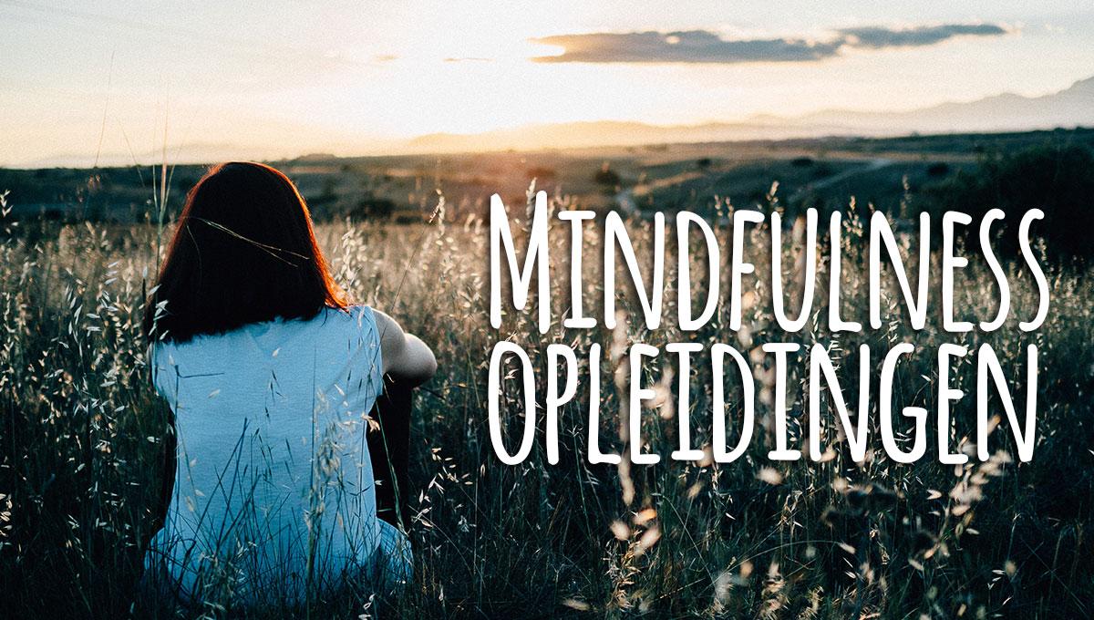 Overzicht Mindfulness opleidingen Nederland