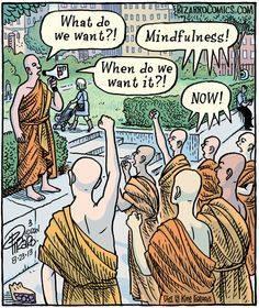 Mindfulness Meditatie Zwolle