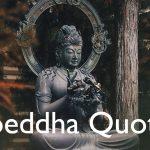 Boeddha Quotes